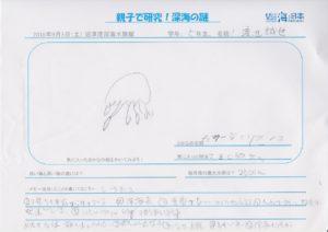 渡辺 誠也(5年 男)-01