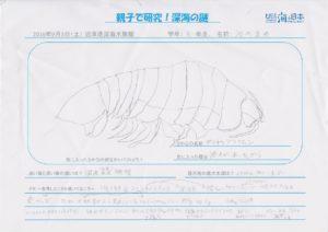 河内 真央(6年 男)-01