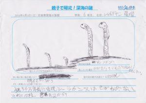 シャイェギヤン 羅瑠(6年 男)-01