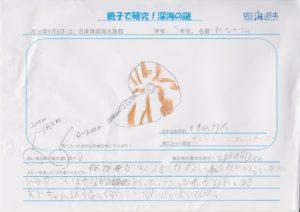 渡邊 瑠玖(3年 男)発表者-01