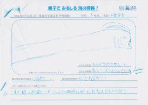 千葉 琴音(6年 女)-01