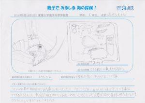 本杉 大地(6年 男)-01