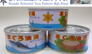 マグロ油漬け缶詰 - コピー